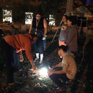 students building a sukkah at night